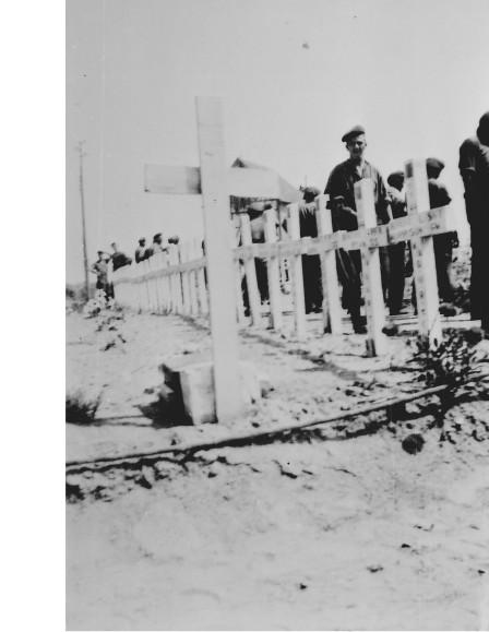 D-Day QOR Graves Maison De Queen's own June 44